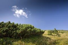 krajobrazowa góra Zdjęcia Royalty Free