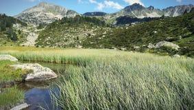 Krajobrazowa góra i jezioro obrazy royalty free
