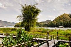 Krajobrazowa góra z stawem Obraz Stock