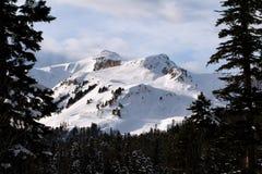 krajobrazowa halna zima Zdjęcia Stock