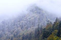 krajobrazowa halna zima Fotografia Stock