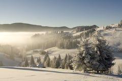 krajobrazowa halna zima Fotografia Royalty Free