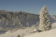 krajobrazowa halna zima Obraz Stock