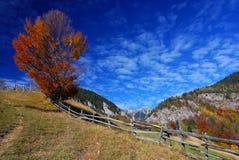 krajobrazowa jesień góra Obraz Royalty Free