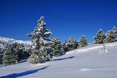 krajobrazowa K zima Obraz Royalty Free