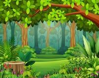 Krajobrazowa lasowa kreskówka zieleń w wiośnie royalty ilustracja