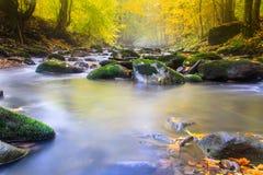 Krajobrazowa magiczna rzeka w jesieni Obraz Stock