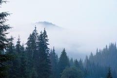 krajobrazowa mglista góra Obrazy Royalty Free
