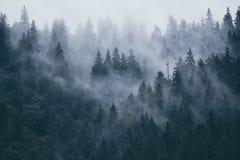 krajobrazowa mglista góra Zdjęcie Stock