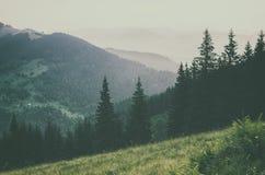 krajobrazowa mglista góra Fotografia Stock