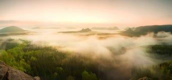 Krajobrazowa mglista panorama Fantastyczny marzycielski wschód słońca nad czarodziejki mglista dolina Zdjęcie Stock
