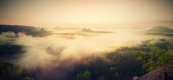 Krajobrazowa mglista panorama Fantastyczny marzycielski wschód słońca nad czarodziejki mglista dolina Zdjęcia Royalty Free