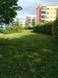 Krajobrazowa natura między budynkami zdjęcie stock