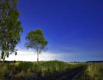 krajobrazowa noc Obraz Royalty Free
