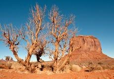 krajobrazowa pomnikowa dolina Zdjęcie Royalty Free