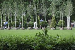 Krajobrazowa projekt wystawa Obraz Royalty Free