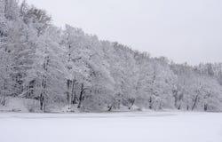 krajobrazowa rosyjska wioski zima Fotografia Royalty Free