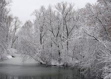 krajobrazowa rosyjska wioski zima Zdjęcia Stock