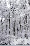 krajobrazowa rosyjska wioski zima Obrazy Stock