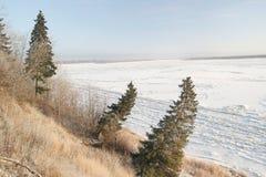 krajobrazowa rosyjska wioski zima Świerczyna na zboczu Zdjęcie Stock