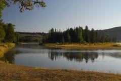 krajobrazowa rzeka Obraz Stock