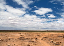 krajobrazowa sawanna Fotografia Stock