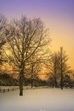 krajobrazowa sceniczna zimy. Obraz Royalty Free