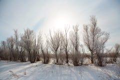 krajobrazowa sceniczna zimy Fotografia Royalty Free