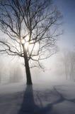 krajobrazowa sunburst zimy. Zdjęcia Royalty Free
