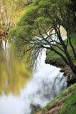 krajobrazowa wiosna Zdjęcie Royalty Free