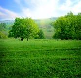 krajobrazowa wiosna obrazy royalty free