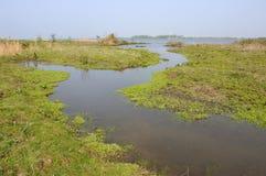 krajobrazowa woda obrazy stock