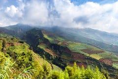 Krajobrazowa zbocze góry i tarasuje ogródy na zboczu w A obraz royalty free
