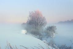 krajobrazowa zima Fotografia Royalty Free