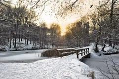 krajobrazowa zima Obrazy Stock