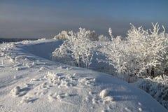 krajobrazowa zima Zdjęcia Royalty Free