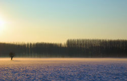 krajobrazowa zima Zdjęcie Royalty Free