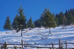 8 krajobrazowa zima Fotografia Stock
