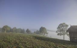 Krajobrazowa zima wzgórza scena z mgłą Obraz Stock