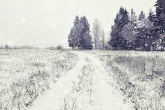 Krajobrazowa zimy droga Obraz Royalty Free