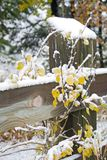 krajobrazowa zimy śniegu Obraz Royalty Free
