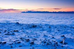 Krajobrazowa zimy wzgórza scena z mgłą. Zdjęcie Royalty Free