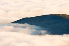 Krajobrazowa zimy wzgórza scena z mgłą. Obraz Stock