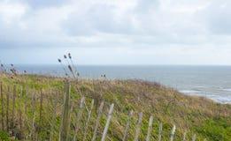 Krajobrazowego formata niewygładzony nabrzeżny widok fotografia stock