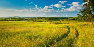 krajobrazowego lato Zdjęcia Stock