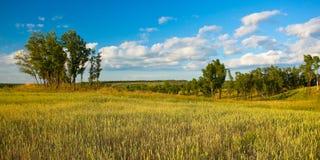 krajobrazowego lato Obraz Stock