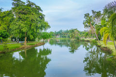 Krajobrazowi drzewa i jezioro w parku Zdjęcie Stock