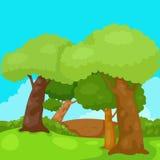 Krajobrazowi drzewa w dżungli Fotografia Royalty Free