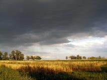 Krajobrazowi thunderclouds nad polem i drzewa na letnim dniu Obrazy Royalty Free