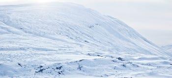 krajobrazowy śnieżny Obrazy Royalty Free